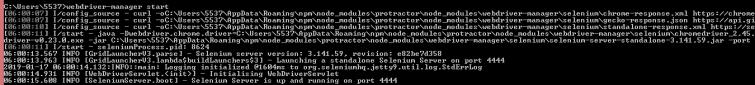 018_selenium_server_running